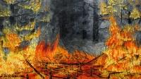 Metsäpalo (Forest fire) 250x450
