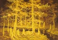Keltainen metsä (Yellow forest) 73x105