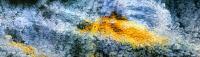 Kulta löytö (Goldfind) 250x900