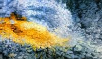 Kulta löytö - osa (Goldfind, partial)