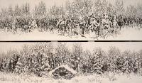 Lumisia tunnelmia (Snowy ambience) 40x145