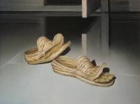 Veron-valitus-kengät (Tax-complaint-shoes) 55x65