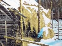 Jorman lato - osa  (Jorma's barn, partial)