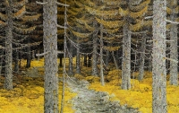 Metsäpolku (Forest path) 116x189