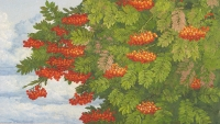 Pihlajanmarjat (Rowan berries) 70x105